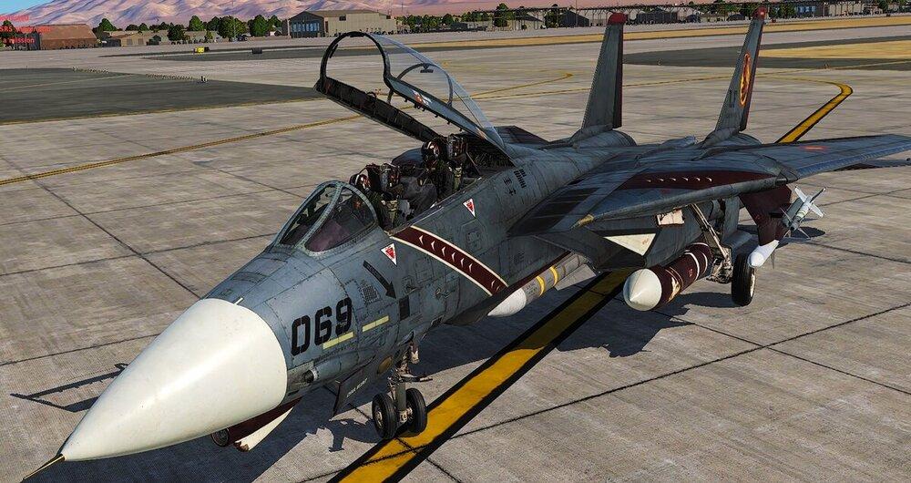 F14 Crazy1.jpg