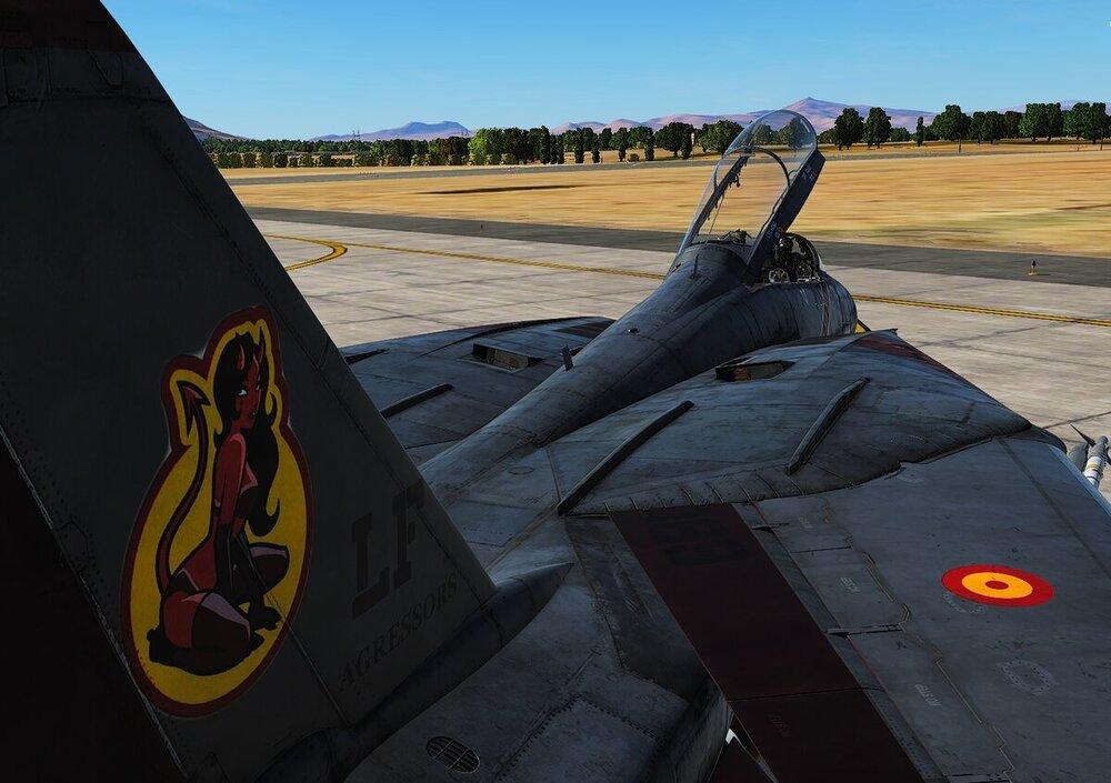 F14 Crazy3.jpg