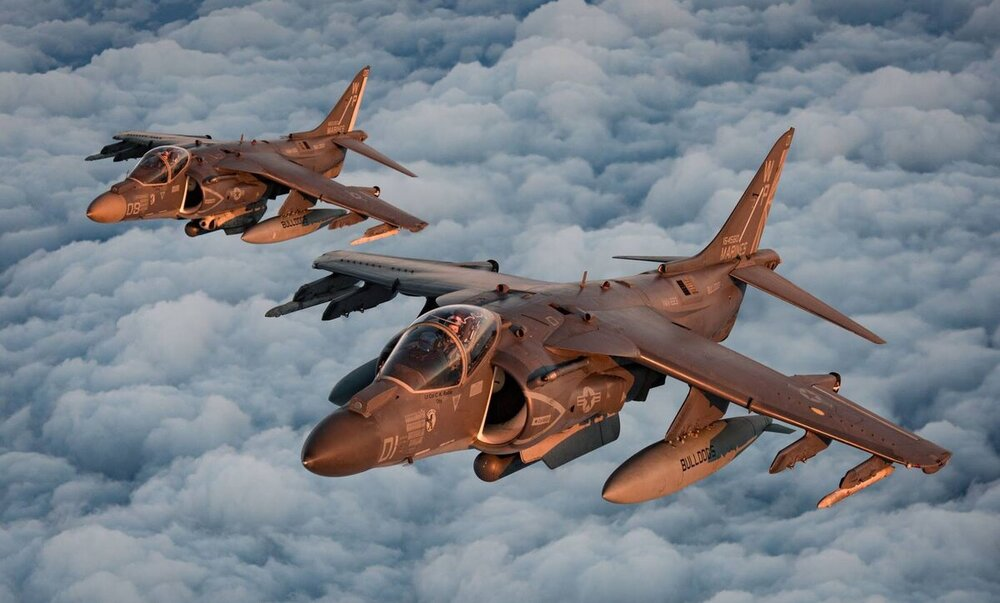 604479589_Harrier06.thumb.jpg.a0cb1400e2e2d6cf8a723b51d20e6fd4.jpg
