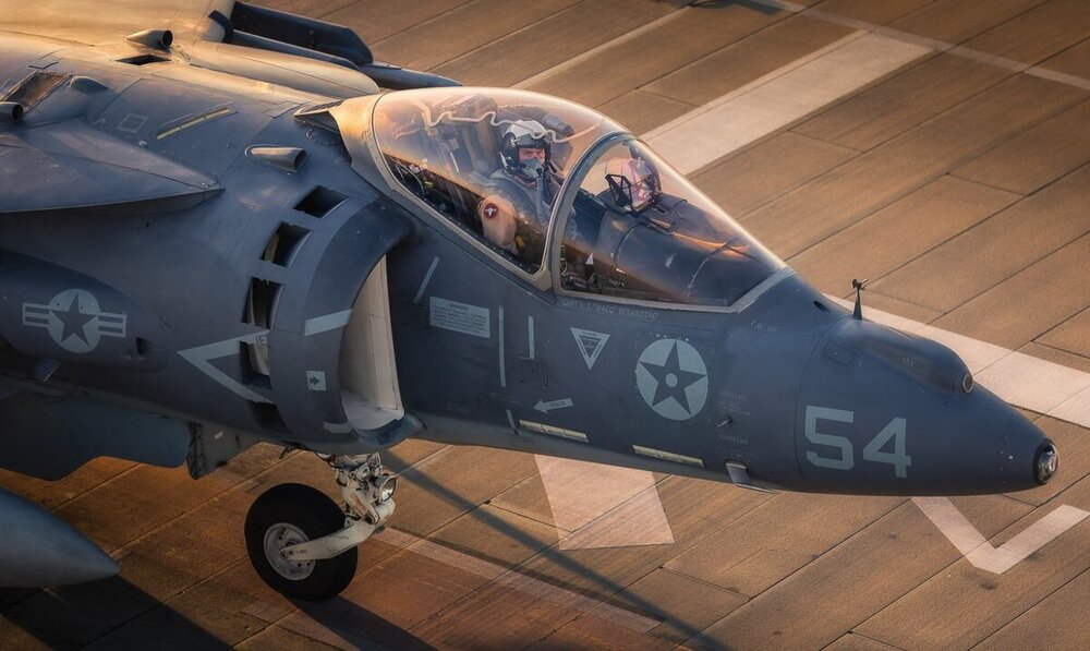 180455485_Harrier10.thumb.jpg.1db45f9cc5dfe15af038704339802be1.jpg