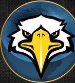 Bird17